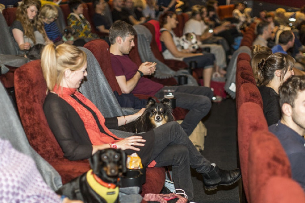 Take your pooch pal to a special doggy screening this Sunday